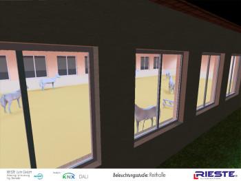 HQI Reithallenbeleuchtung Planung, Helligkeit, günstig